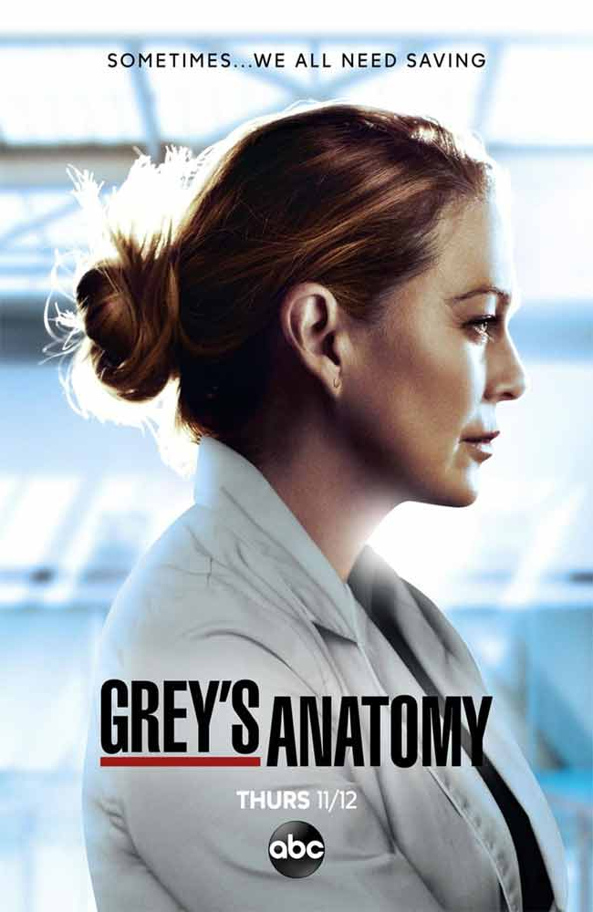 Poster de Greys Anatomy (Anatomia Segun Grey)